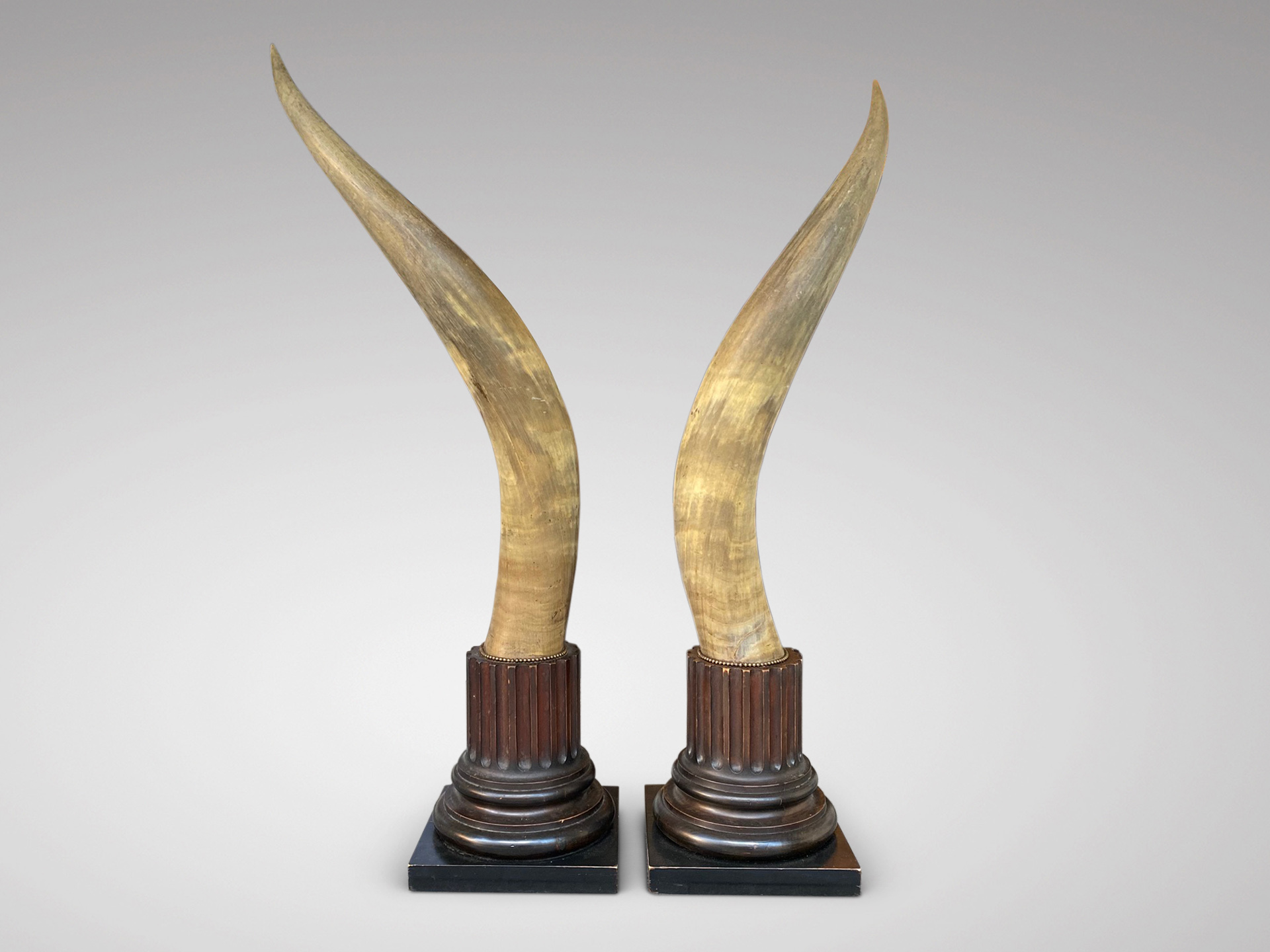 PAIR OF HORNS MOUNTED ON A PEDESTAL